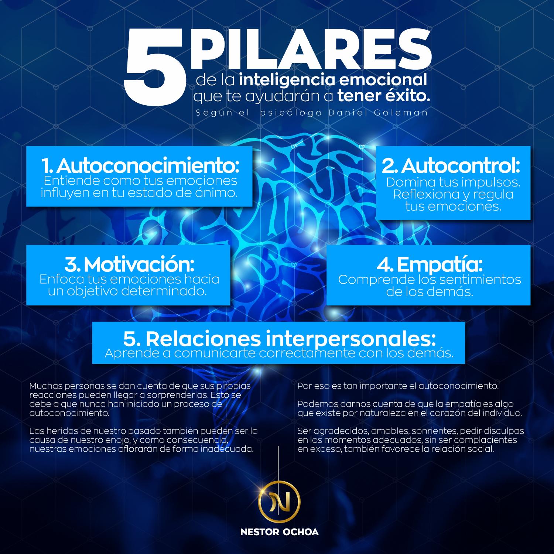 5 pilares de la inteligencia emocional - Nestor Ochoa - Inteligencia emocional - Tecnicas del PNL - Control sobre las emociones